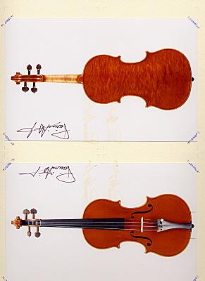 piccinottiヴァイオリン